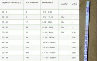 HCG Tabelle Urin mit positivem Schwangerschaftstest